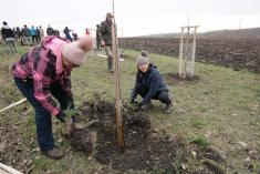 Sázíme stromy